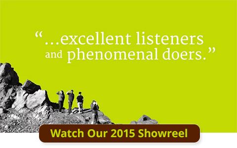 2015 BrandQuery Showreel