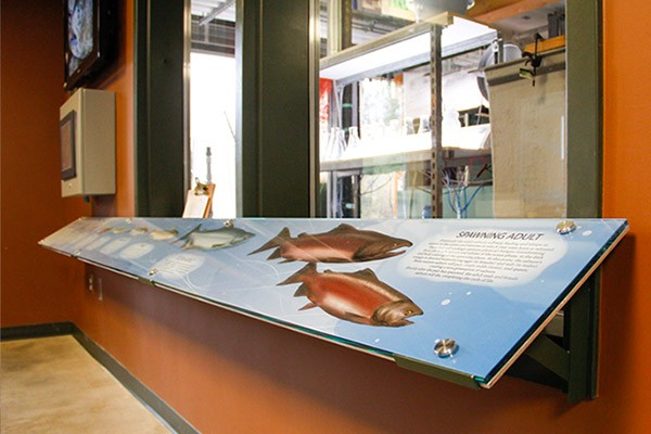 Perry Center - This work included both interpretive and donor recognition signage for an educational building focused on fisheries and environmental sciences.