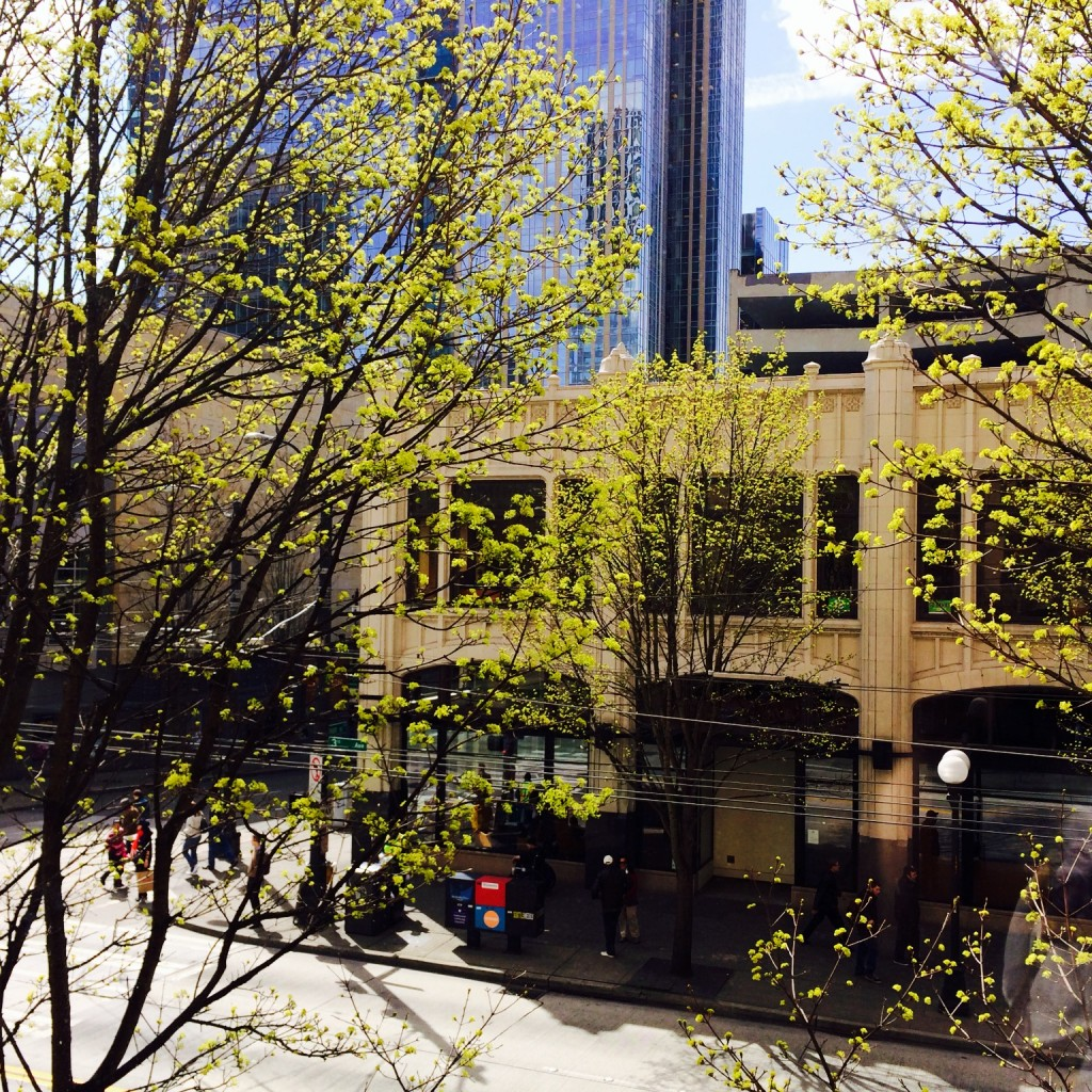 BrandQuery Seattle Office
