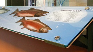 Perry Center interpretive and donor recognition signage for an educational building focused on fisheries and environmental sciences.